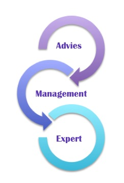 Individuele ontwikkeling en organisatieontwikkeling